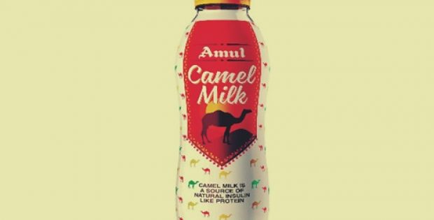 Amul launches Camel Milk bottles in select markets of Gujarat