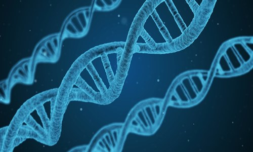Latest UK Biobank genetic data offered to global health researchers